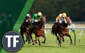 How to Find Great Horse Racing Tips